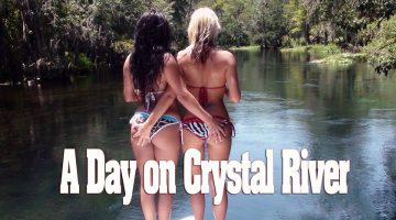 Babes in Bikinis on a Boat on Crystal River
